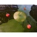 SKIMCRUSH LIIGHT pour Pompage lentilles d'eau